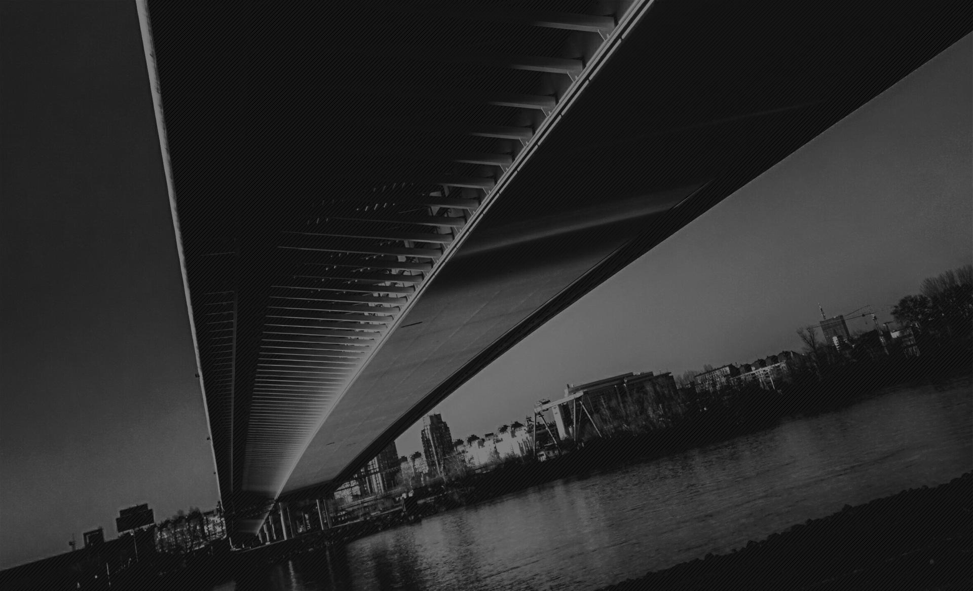 most na adi, autor Igor Borovic